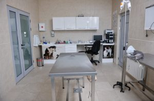 veterinary clinics cost segregation